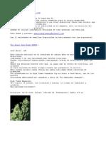 Cannabis.Yerba.Marihuana.Maria.Hash.Hashish.Hass.Semis.Cultivo.Indoor.doc