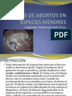 Causas de Abortos en Especies Menores