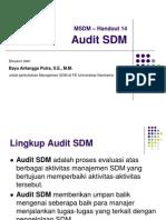 Handout 14 Audit SDM