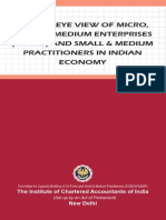 A Birds eye view of micro small and medium enterprises and Small and Medium Practitioners - CCBCAF.pdf