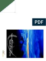 Company Profile Sierad.pdf