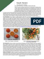 DaisySL mandarin.pdf