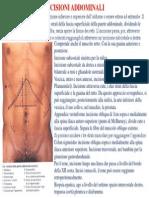INCISIONI ADDOMINALI.pdf
