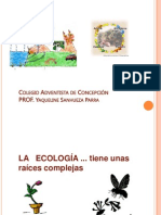 Ecologia Piramide Ciclos Bio Geoquimt