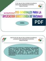 APLICACIÓN SIMULTÁNEA DE NUEVAS VACUNAS