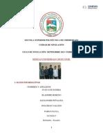 INCENDIOS FORESTALES.docx