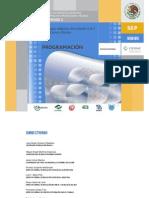Programación (1).pdf