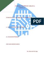 resumen curso plataforma pdf