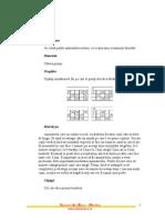 bingo_explicatie_joc.pdf