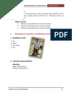 Imforme 1 de Suelos(Calicata)