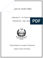 ASSIGNMENT on taxila visit .doc