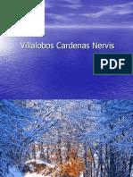 Nieve-Villalobos Cardenas Nervis