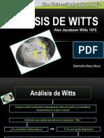 Exposición Análisis de Witts.pptx
