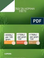 ENERGY IN HUMAN DIETS BIO SL.pptx