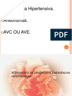 14-- Atendimento +á Urg+¬ncia e Emerg+¬ncia Hipertensiva