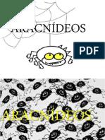 ARACNIDEOS