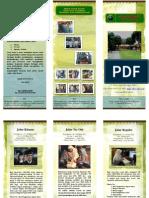 Brosur PPDB 2012.docx