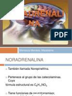 Nor Adrenalin A