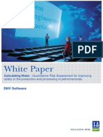 Calculating Risk_ DNV White Paper.pdf