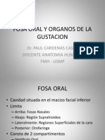 10 FOSA ORAL Y ORGANOS DE LA GUSTACION.pdf