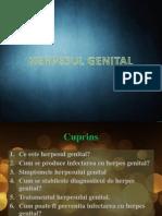 Herpes Genital 2007