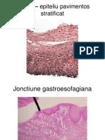 Mini atlas de patologie digestiva.ppt