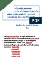 Particularitati structurale si functionale ale sistemului nervos central.pptx