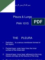 Pleura & Lungs.ppt