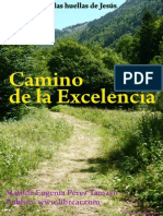 Perez Tamayo Matilde Eugenia-Camino de La Excelencia