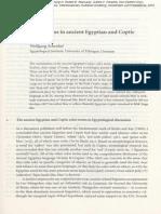 Schenkel_Color_terms_2007.pdf