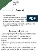 2- Enamel (Mahmoud Bakr)(1)