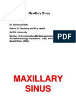 12- Maxillary Sinus (PRACTICAL)