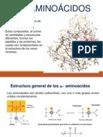 Aminocidos y Proteinas