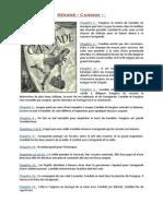 Resumé de Candide - Description des personnages et morale