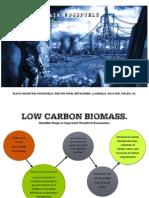 Low Carbon Biomass.