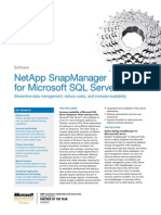 NetApp Snapmanager Ms SQL Server