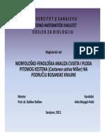 Magistarski_rad_-_prezentacija.pdf