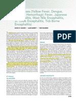 Dengue Flavivirus Mandell