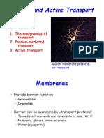 Voet_Ch10_Transport.pdf