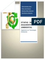 Etapas Del Diagnostio Ambiental.