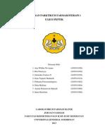 LAPORAN AKHIR P1 ULKUS PEPTIK KEL. D2.docx