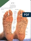 digitopuntura-y-reflexologia.pdf