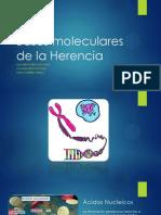 Bases Moleculares de La Herencia y Mutaciones