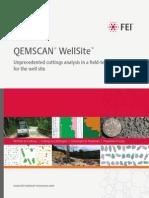 QEMSCAN WellSite Product Brochure v9