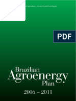 Brazilian Agroenergy