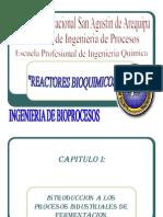 36866684-REACTORES-BIOQUIMICOS