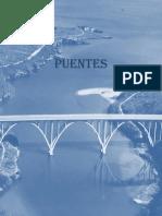 Libro Texto Puentes