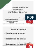 CLASE 3. Picaduras y Mordeduras
