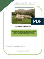 Plan de Negocio Huamani