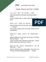 chinesepod_C0418.pdf